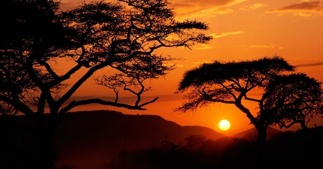 Serengeti_National_Park_Sunset_Tanzania