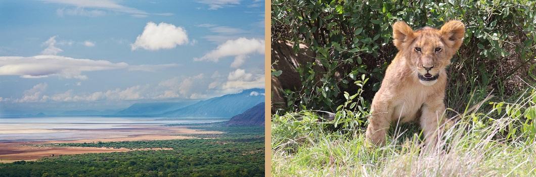 Tanzania - Lake Manyara - Lake Manyara Landscape
