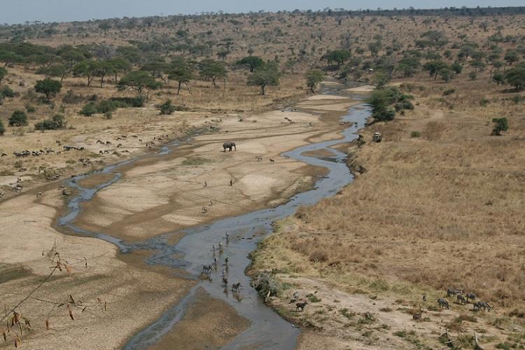 Tarangire_River