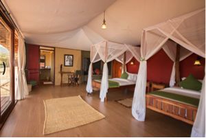 Karatu Simba Lodge - Malika Travel