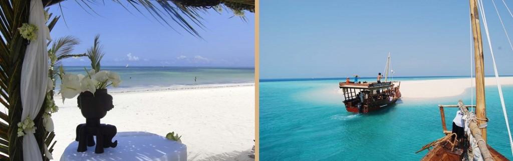 next paradise1